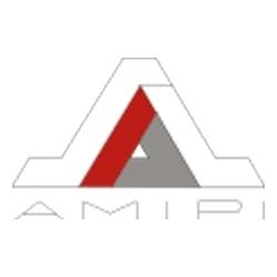 AMIPI - Jean-Marc Richard -www.fondation-amipi-bernard-vendre.org